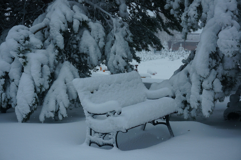 Зима в Парке памяти