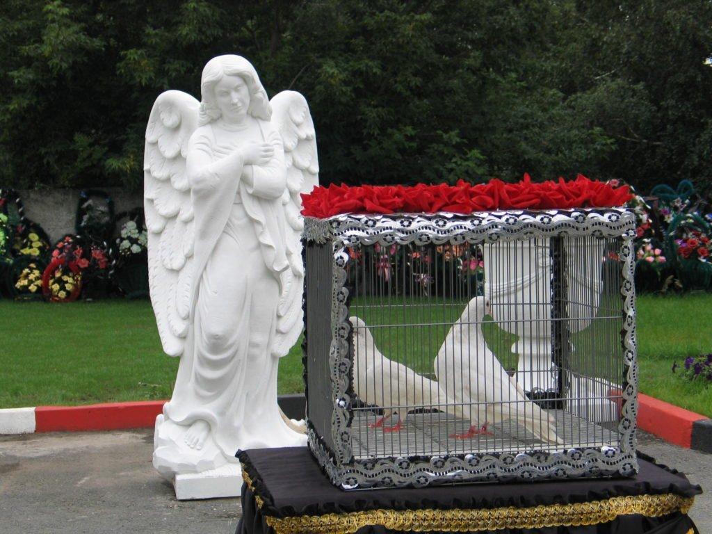 голуби-церемония